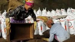 """Nghề lạ ở Lạng Sơn: Gom """"phân vua"""" trong hang tối kiếm ra tiền"""
