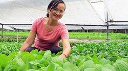 Quá nhiều rào cản phát triển nông nghiệp hữu cơ