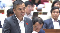 """ĐBQH Nguyễn Lân Hiếu: """"Không chỉ kiện Trung Quốc xâm phạm bãi Tư Chính..."""""""
