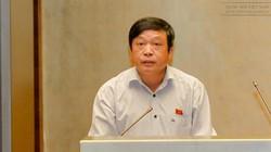 Nông sản Trung Quốc trà trộn hàng trong nước gây thiệt hại nặng nề