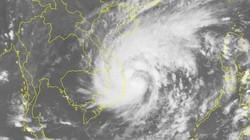 Tin mới cơn bão số 5: Giật cấp 12, mưa to từ Quảng Ngãi - Khánh Hòa