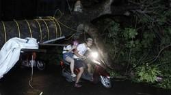 Diễn biến mới của bão số 5 Matmo đổ bộ đất liền Bình Định - Phú Yên trong đêm