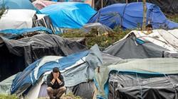'Rừng Calais' - trại người nhập cư chờ cơ hội vào Anh