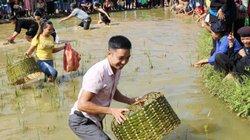Hà Giang: Cả làng ra xem, cổ vũ trai gái lội ruộng thi úp bắt cá