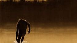 """Bí ẩn quái thú """"người lông"""" cai quản rừng xanh gây kinh hãi"""