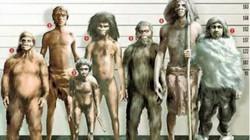 Bí ẩn về sự trả thù dai dẳng của người Neanderthal