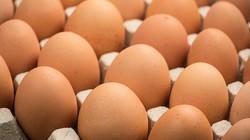 Thi ăn trứng lấy 650 ngàn đồng, người đàn ông ăn đến quả thứ 42 thì lăn ra chết