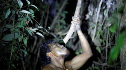 Thủ lĩnh bộ lạc Amazon bị những kẻ lâm tặc phục kích, sát hại