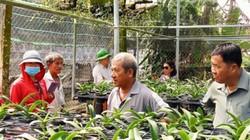 Hội Nông dân BR-VT: Vốn nhỏ giúp nông dân  lập trang trại lớn