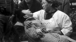 Thảm họa thủy ngân Minamata: Mặt tối của công nghiệp hóa