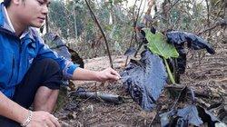 Quảng Trị: Phát hiện dầu thải ở thượng nguồn sông Hiếu