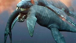 Loài thủy quái thời tiền sử dài 9 mét, lực cắn mạnh gấp 4,5 lần khủng long bạo chúa