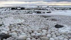 """Kỳ lạ hàng chục quả """"trứng băng"""" trôi dạt vào bờ biển Phần Lan"""