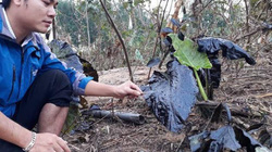 Dầu thải đổ ra sông Hiếu: UBND tỉnh yêu cầu xử lý trách nhiệm