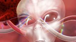 Con người mới chính là sinh vật đến từ hành tinh khác?