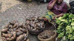 Hốt hoảng trước những thực phẩm nhìn thôi đã thấy sợ ở chợ châu Phi