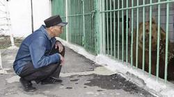Cô gấu duy nhất thế giới ngồi tù chung với con người được trả tự do sau 15 năm
