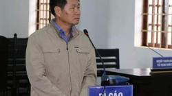 Nguyên Phó chủ tịch huyện vào tù vì chiếm đất rừng