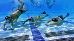 """Người Cá: Môn thể thao """"Siêu dị"""" tại SEA Games 30"""