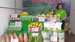 Đã mắt ngắm đặc sản nông nghiệp sạch của nông dân Thái Nguyên