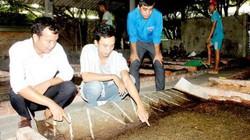 Đồng Nai: Bộ đội xuất ngũ về quê nuôi ruồi lính đen kiếm bộn tiền