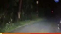 Video: Lái xe máy trong đêm tối, bị sát thủ săn mồi lao tới vồ