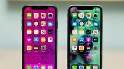 iOS 14 trên iPhone 12 đang được phát triển, iFan mong chờ