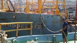 Không mua được bảo hiểm: Chủ tàu 67 nợ tiền tỷ, ngân hàng dọa kiện
