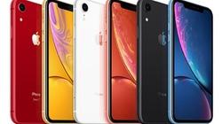 Apple chuyển hướng xuất khẩu iPhone từ Ấn Độ nhằm giảm gánh nặng thuế