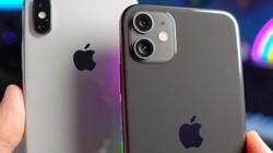 Đồng giá 12 triệu nên chọn iPhone 11 lock hay iPhone X?