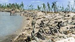 """76 năm sau trận đổ bộ """"đẫm máu"""" nhất của Thuỷ quân Lục chiến Mỹ"""