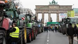 10.000 nông dân Đức kéo tới Berlin phản đối hạn chế phân bón, thuốc trừ sâu