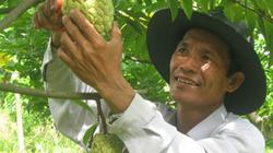 Bà Rịa-Vũng Tàu: Có vốn vay ưu đãi, nông dân hết nợ, hết nghèo