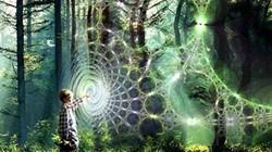 Các hiện tượng siêu nhiên, thần bí trong lịch sử là có thật?