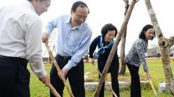 Chủ tịch Hồ Quốc Dũng: Bình Định đã xây dựng kịch bản ứng phó biến đổi khí hậu