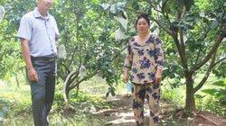 Nhân rộng vườn cây trái cuối nguồn sông Ba Lai