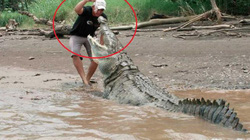 Malaysia: Rùng mình phát hiện nhiều mảnh thi thể người sau khi cá sấu sổng chuồng