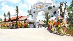 Hậu Giang: Khởi tố, bắt tạm giam Tổng giám đốc Khu du lịch Phú Hữu