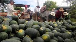 Tái cơ cấu nông nghiệp: Thủ tướng đối thoại với ND- Nhiều điểm nóng mong Chính phủ tháo gỡ