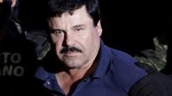 """Trùm ma túy El Chapo từng """"trả lương"""" cho cả bộ máy chính quyền Mexico?"""