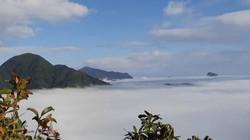 """CLIP: Mãn nhãn ngắm biển mây """"tiên cảnh"""" trên đỉnh Kỳ Quan San"""