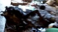 Kon Tum: Quấn chăn ngủ cạnh bếp lửa, một phụ nữ bị thiêu cháy