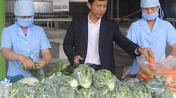 Kỳ vọng vào Hội nghị đối thoại giữa Thủ tướng với nông dân