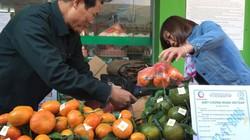 Hapro đưa nông sản sạch vùng Yên Bái đến với người dân Thủ đô