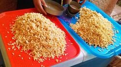 """""""Mỏ vàng"""" dưới rễ cây, lấy về bán hơn 2 triệu/kg thành món... """"ngon quên sầu"""""""