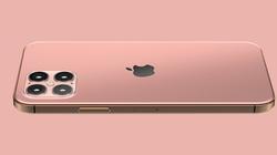 iPhone 12 năm sau sẽ có cả Face ID và Touch ID
