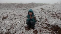 Ảnh: Rét cầm cập, sương muối phủ trắng rau màu ở Mộc Châu