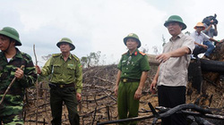 Quảng Nam: Thu hơn 136 tỷ đồng để bảo vệ rừng