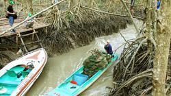 Thủ tướng: Phát huy, bảo tồn hệ sinh thái đất ngập nước làm du lịch