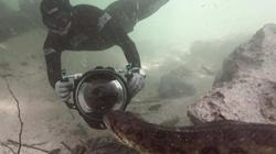 Nghẹt thở cảnh thợ lặn đối đầu trăn anaconda khổng lồ dài 6 mét dưới nước ở Brazil